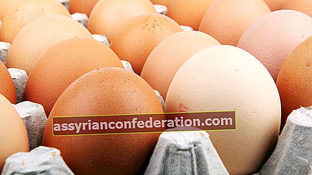 Apa artinya melihat telur dalam mimpi? Arti memecah, mengumpulkan dan memakan telur dalam mimpi