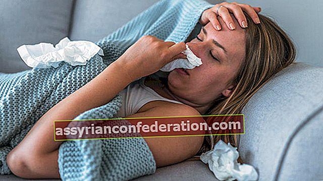 돼지 독감의 증상은 무엇입니까?