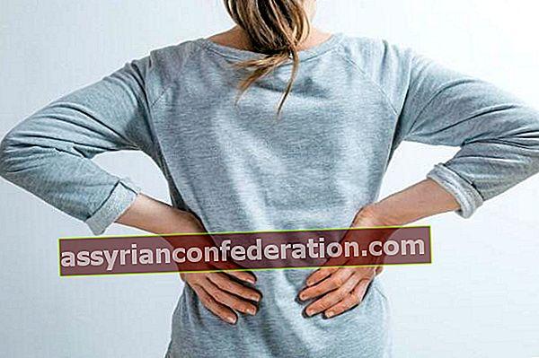 신장 통증의 증상은 무엇입니까?