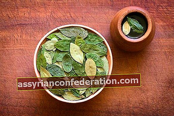 Quali sono i vantaggi del tè Mate? Come si prepara il tè mate?