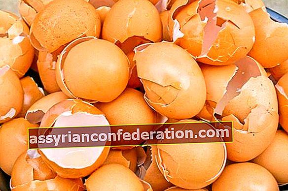 Non gettare il guscio d'uovo nel cestino!