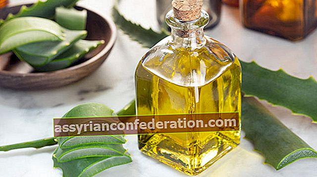 Quali sono i vantaggi dell'olio di aloe vera? Ricetta dell'olio di aloe vera fatto in casa ...